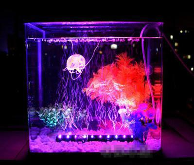 led aquarium decorations