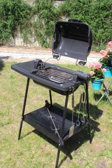 tefal barbecue rotissoire